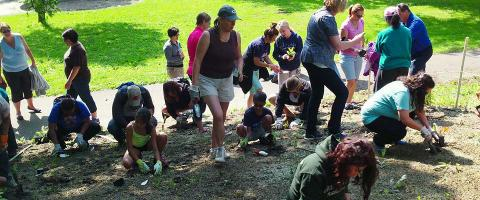 UW Arboretum Earth Partnership